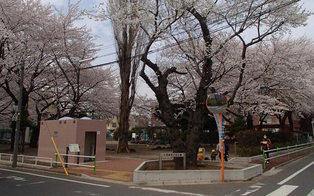 栗山造園 首都高速道路の緑地の維持管理スタッフを募集